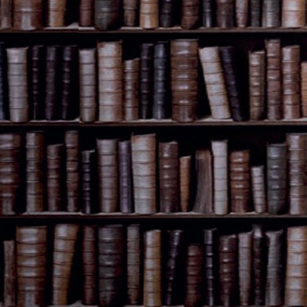 Bookcase Wallpaper Galerie 600x600
