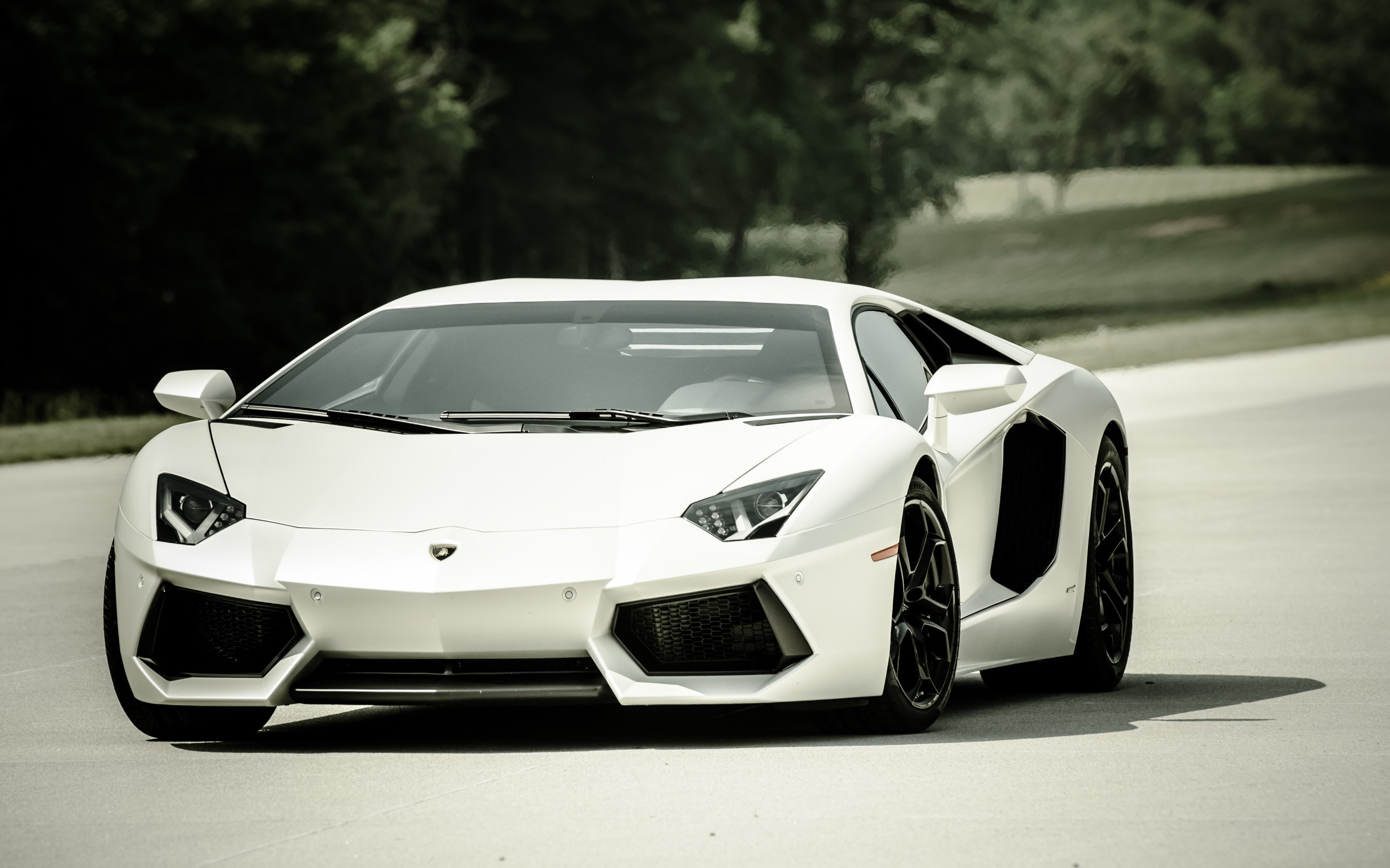 Cool Lamborghini Aventador HD Wallpaper   HD Wallpaper 2880x1800