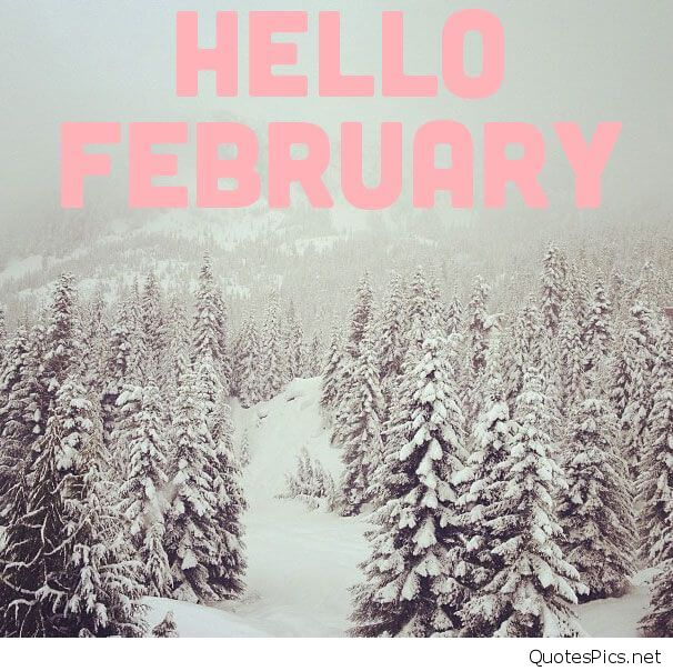 Funny Cute Hello February Images quotes and wallpapers 606x604