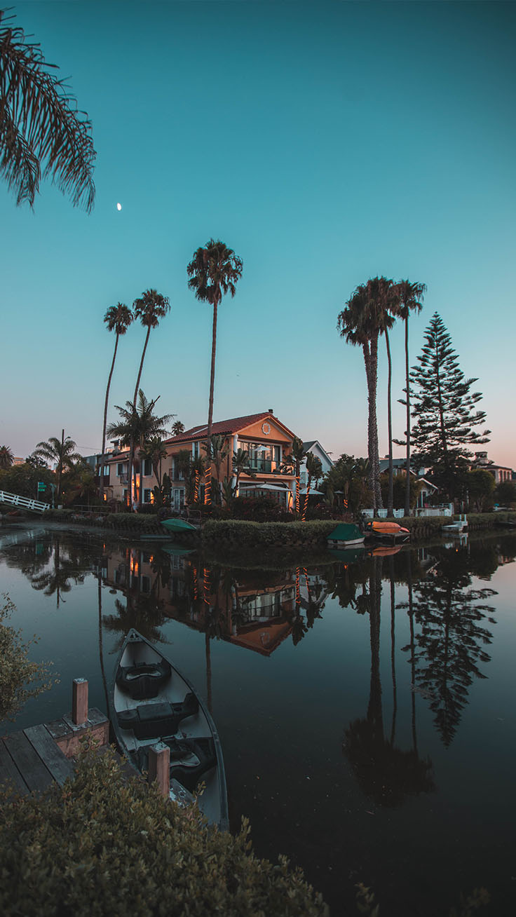 20 Beautiful Los Angeles iPhone X Wallpapers Preppy Wallpapers 736x1308