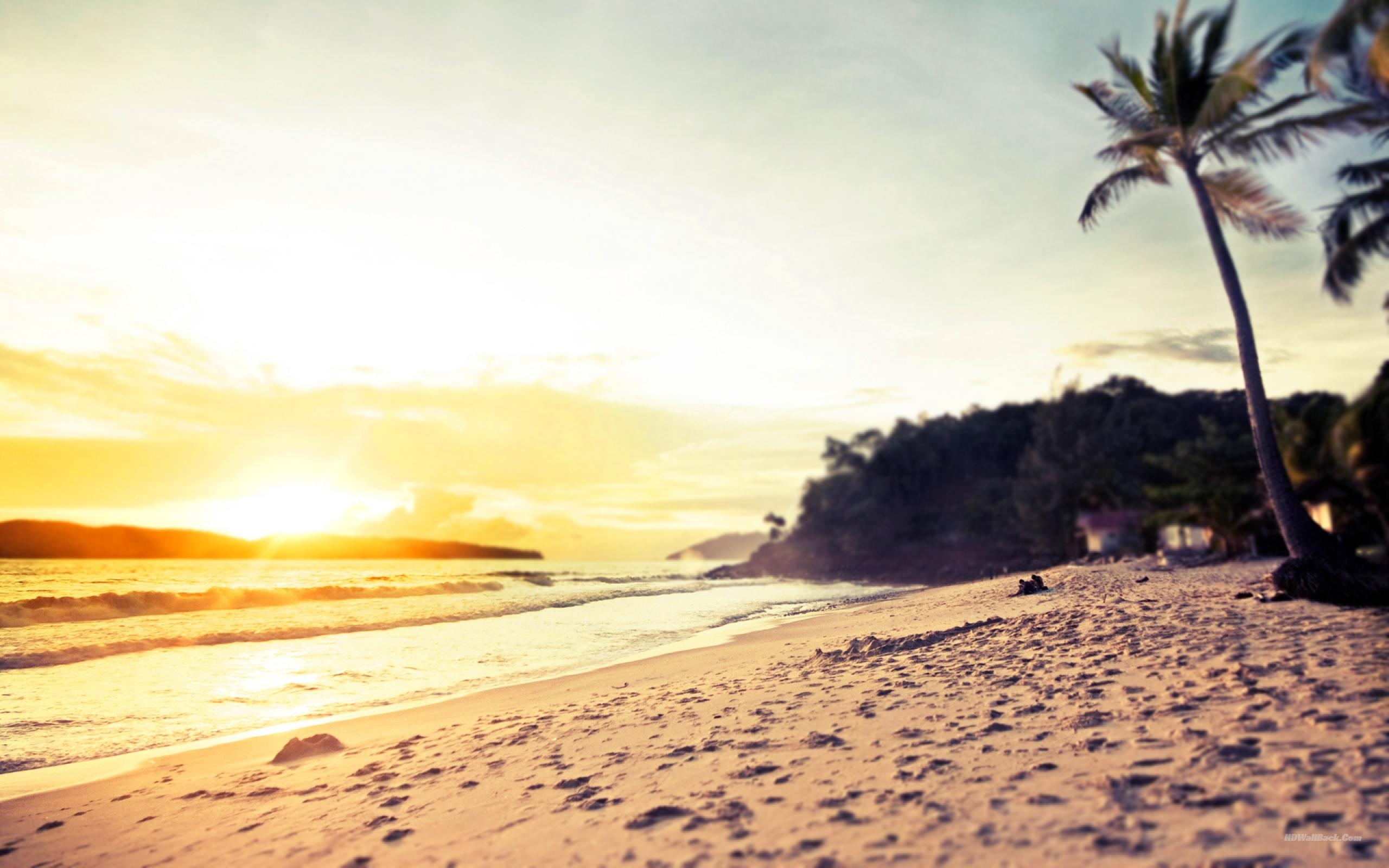 Tumblr Summer Backgrounds HD Wallpapers HD BackgroundsTumblr 2560x1600