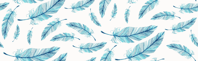 Bird Feather Wallpaper - WallpaperSafari