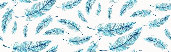 Bird Feather Wallpaper - WallpaperSafari