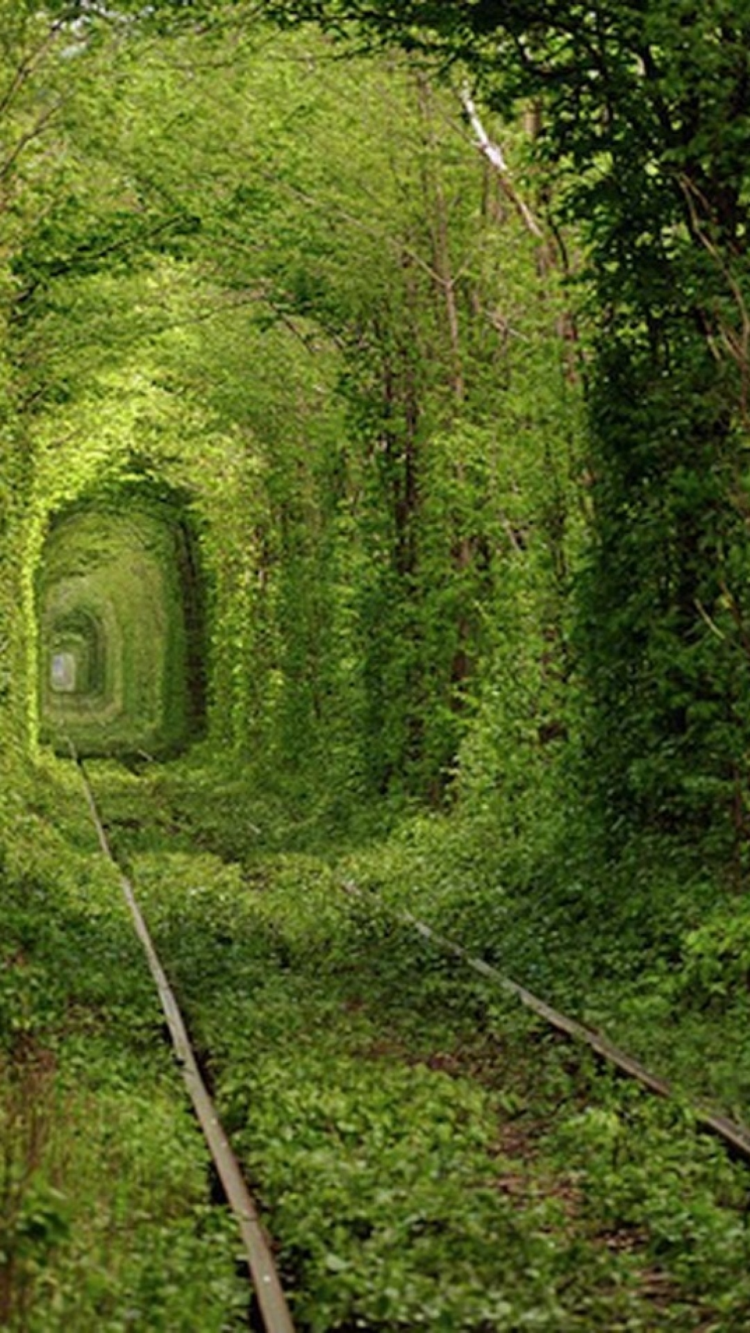 Free Download 1080x1920 Rail Way Tunnel Ukraine Nature