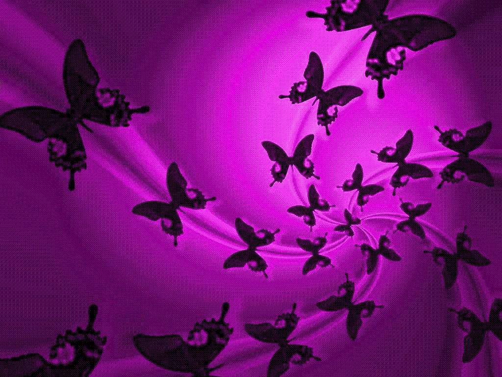 Purple Butterfly Backgrounds wallpaper Purple Butterfly Backgrounds 1024x768