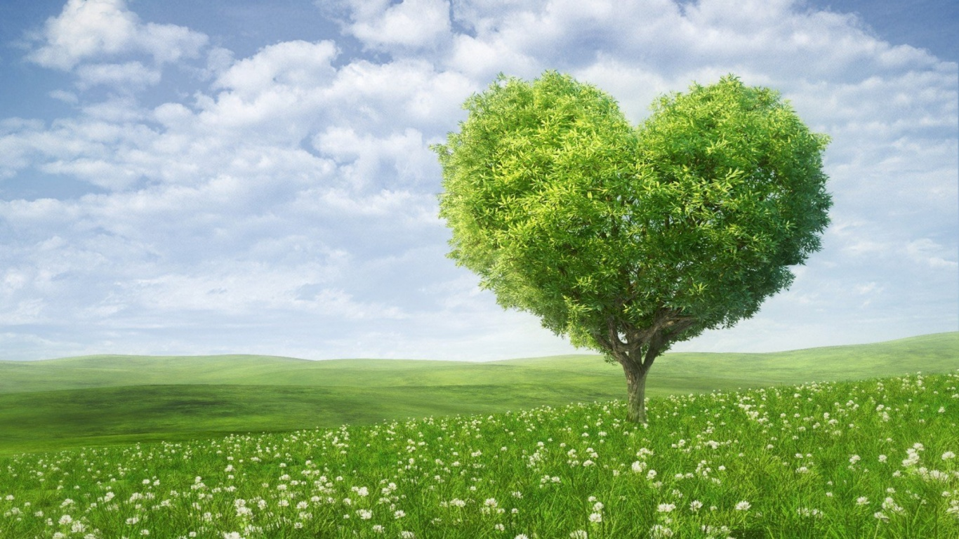 Free Download 1366x768 Nature Heart 1366x768 For Your