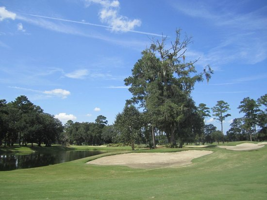 Pointe Golf Club Bluffton Sc PC Android iPhone and iPad Wallpapers 550x412