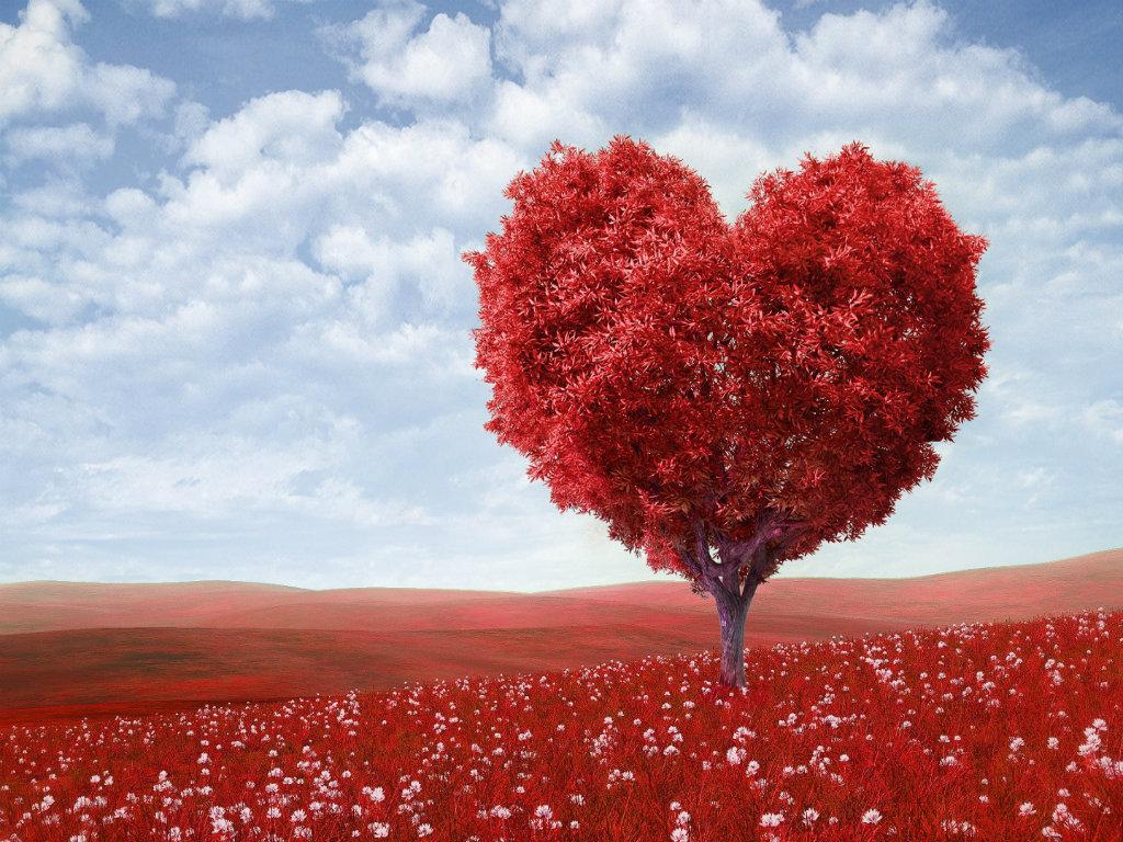 Hd wallpaper i love you - Love U Desktop Wallpaper Most Hd Wallpapers Pictures Desktop