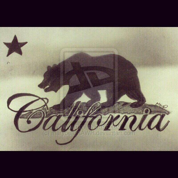 Cali Bear Wallpaper California knows how to party 600x600