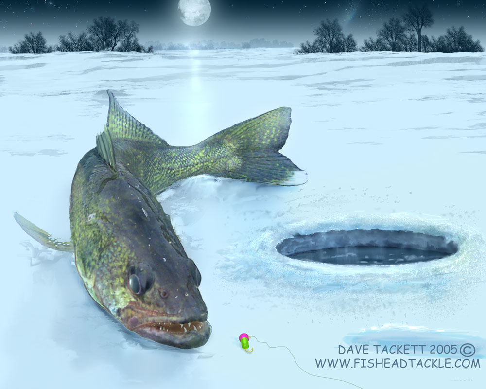 Walleye wallpaper wallpapersafari for Ice fishing for walleye