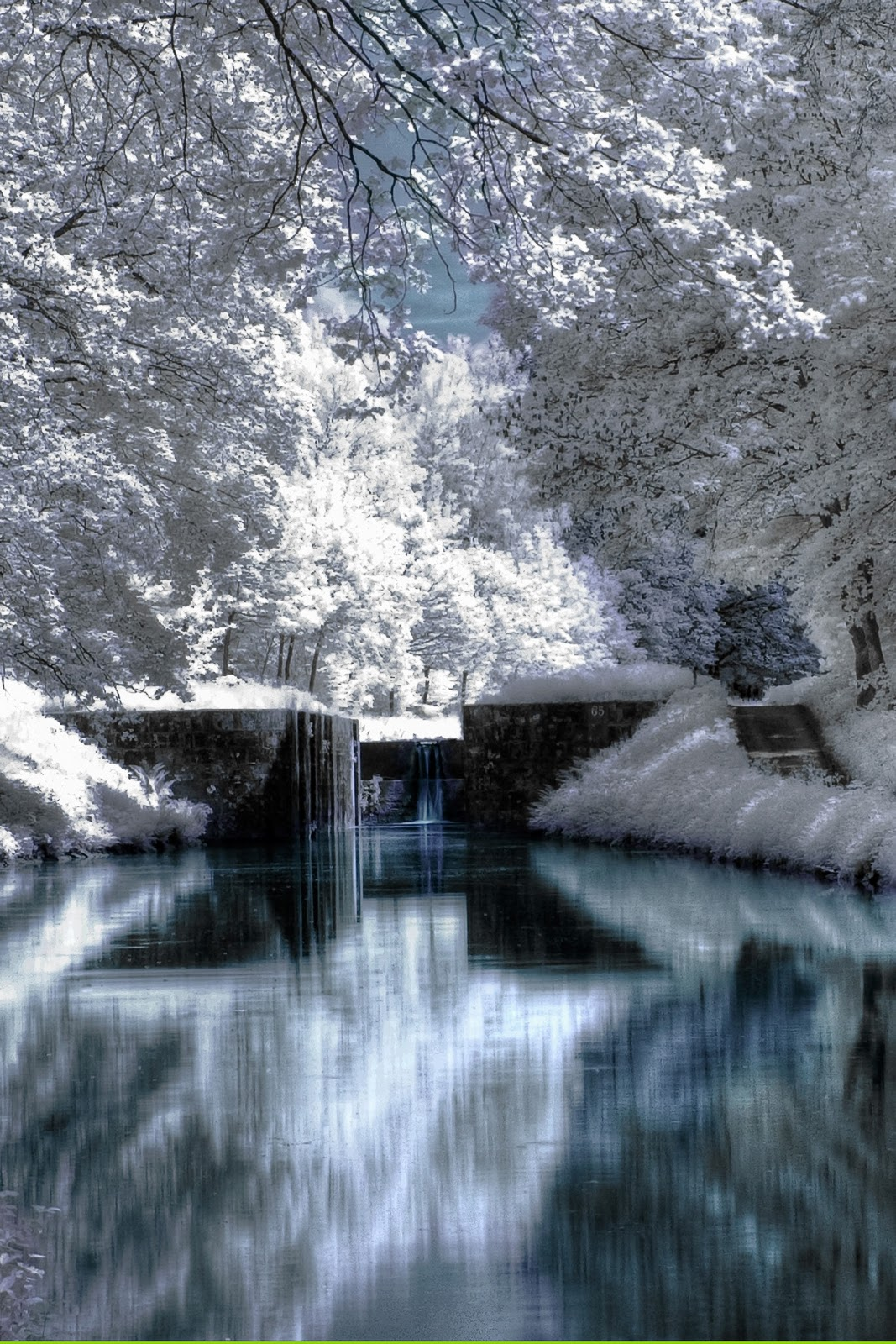 wallpapers christmas hd iphone wallpapers park snow wallpapers winter 1067x1600