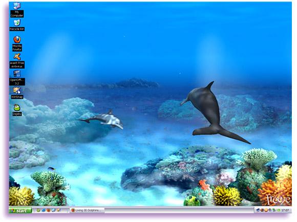 Living 3D Dolphins Wallpaper Animated 3D Wallpaper 580x434