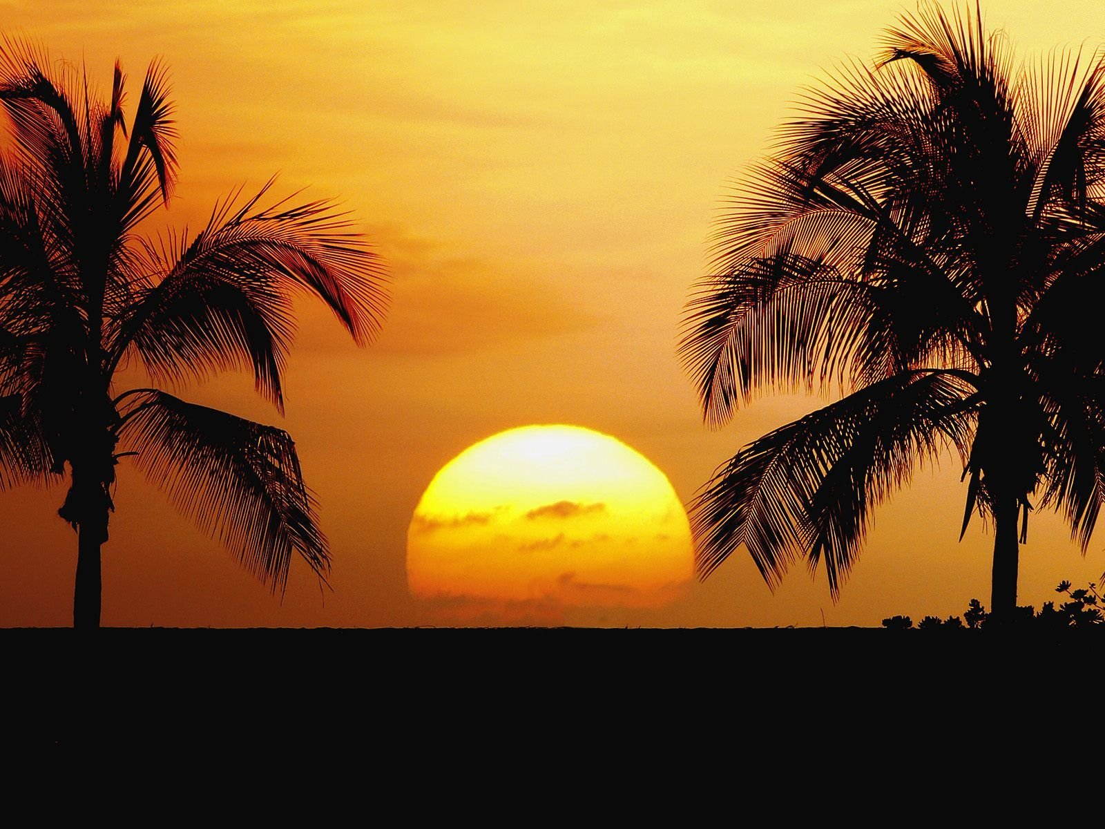 Hawaiian Beach Sunset Wallpaper Background: Sunset Hawaii Beach Wallpapers