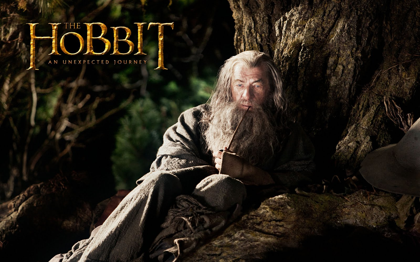 Wallpapers HD El Hobbit Wallpapers HD Wallpapers Fondo de Pantalla 1600x1000