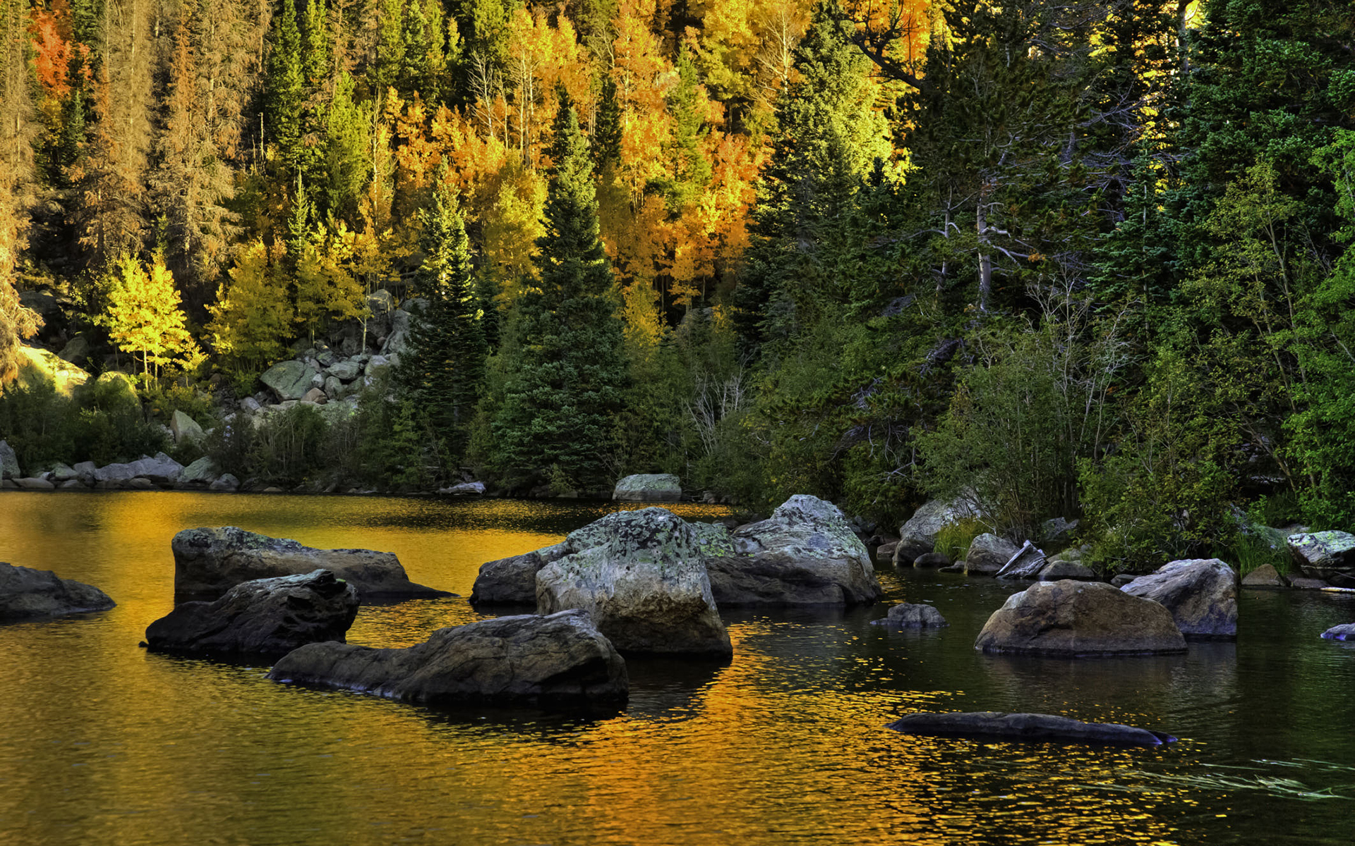 Rocky Mountain National Park by Bob Pool   Desktop Wallpaper 1920x1200