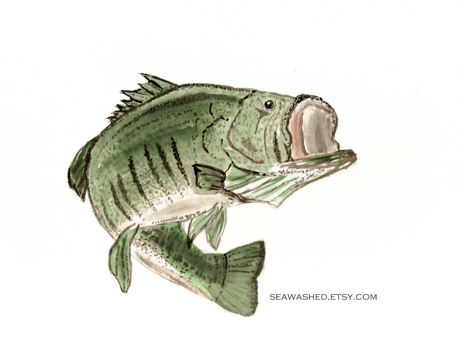 Largemouth bass fishing wallpaper wallpapersafari for Bass fishing pics
