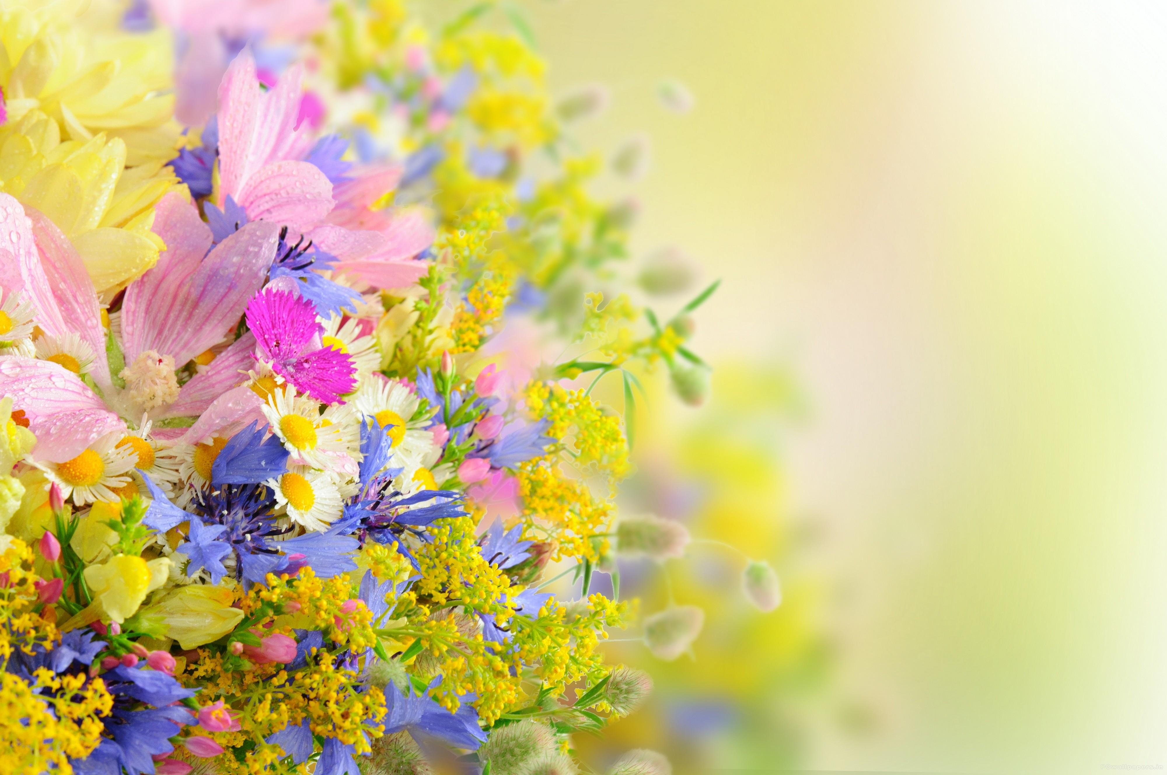 Pretty Flowers Wallpaper