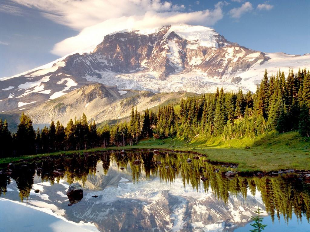 Mount Rainier   USA National Parks Wallpaper 32352780 1024x768