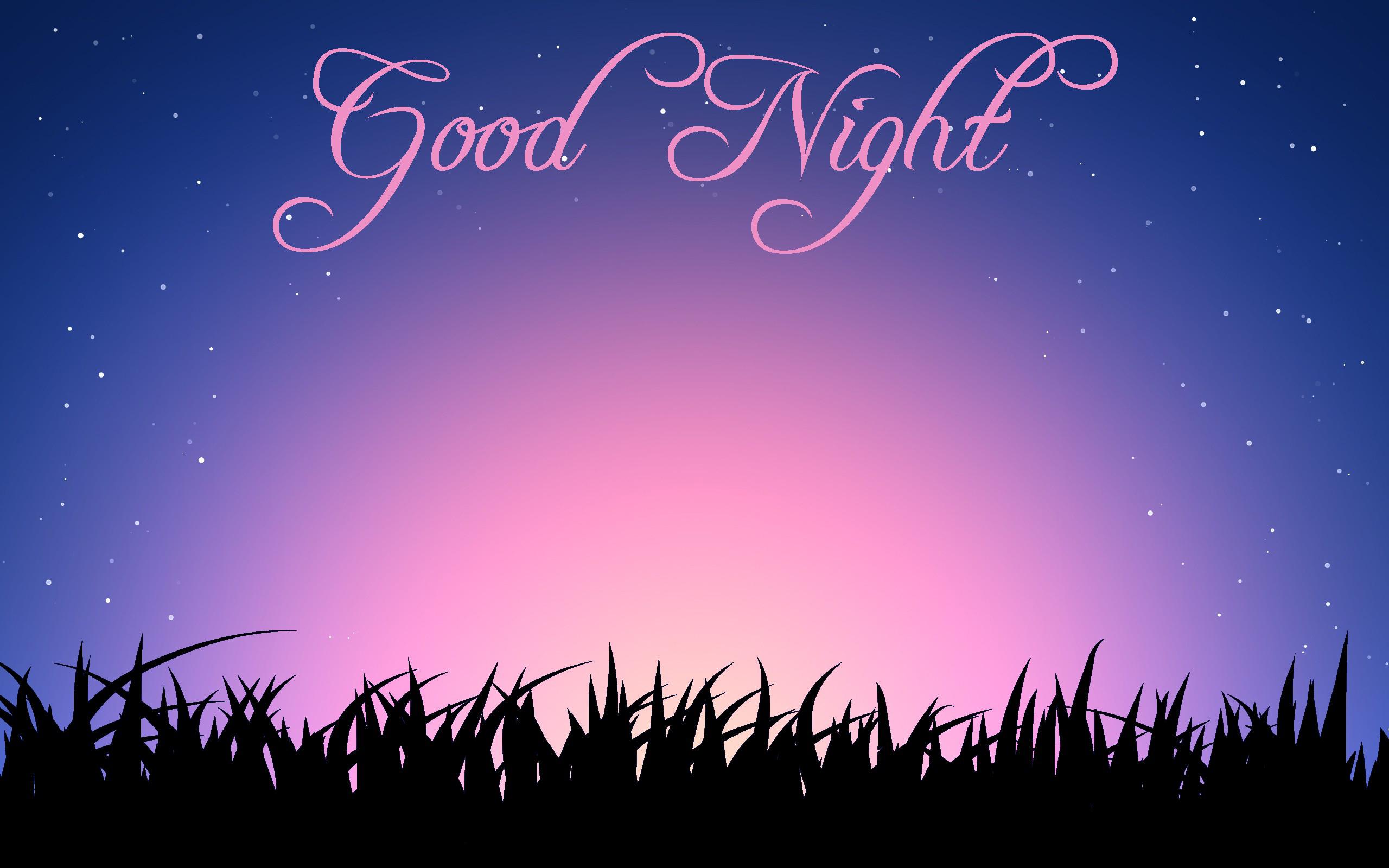 Good Night Wallpapers Good Night Wallpapers Good Night Wallpapers 2560x1600