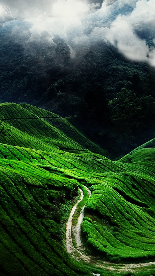 15 Nature Wallpapers for iPhone 640x1136