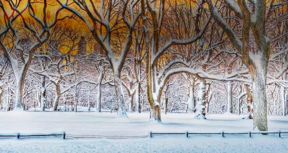 Sunrise in Central Park after a Snowstorm in New York City New York 958x512