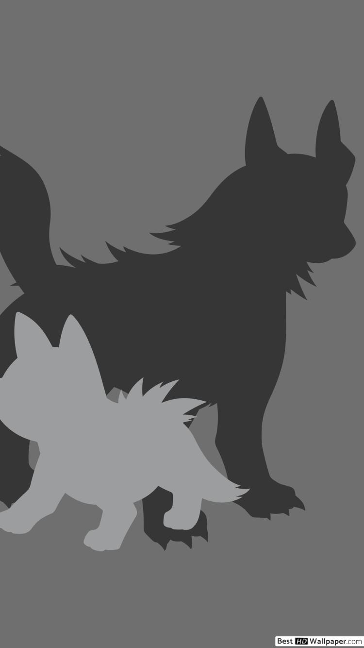 Mightyena and Poochyena of Pokemon HD wallpaper download 750x1334