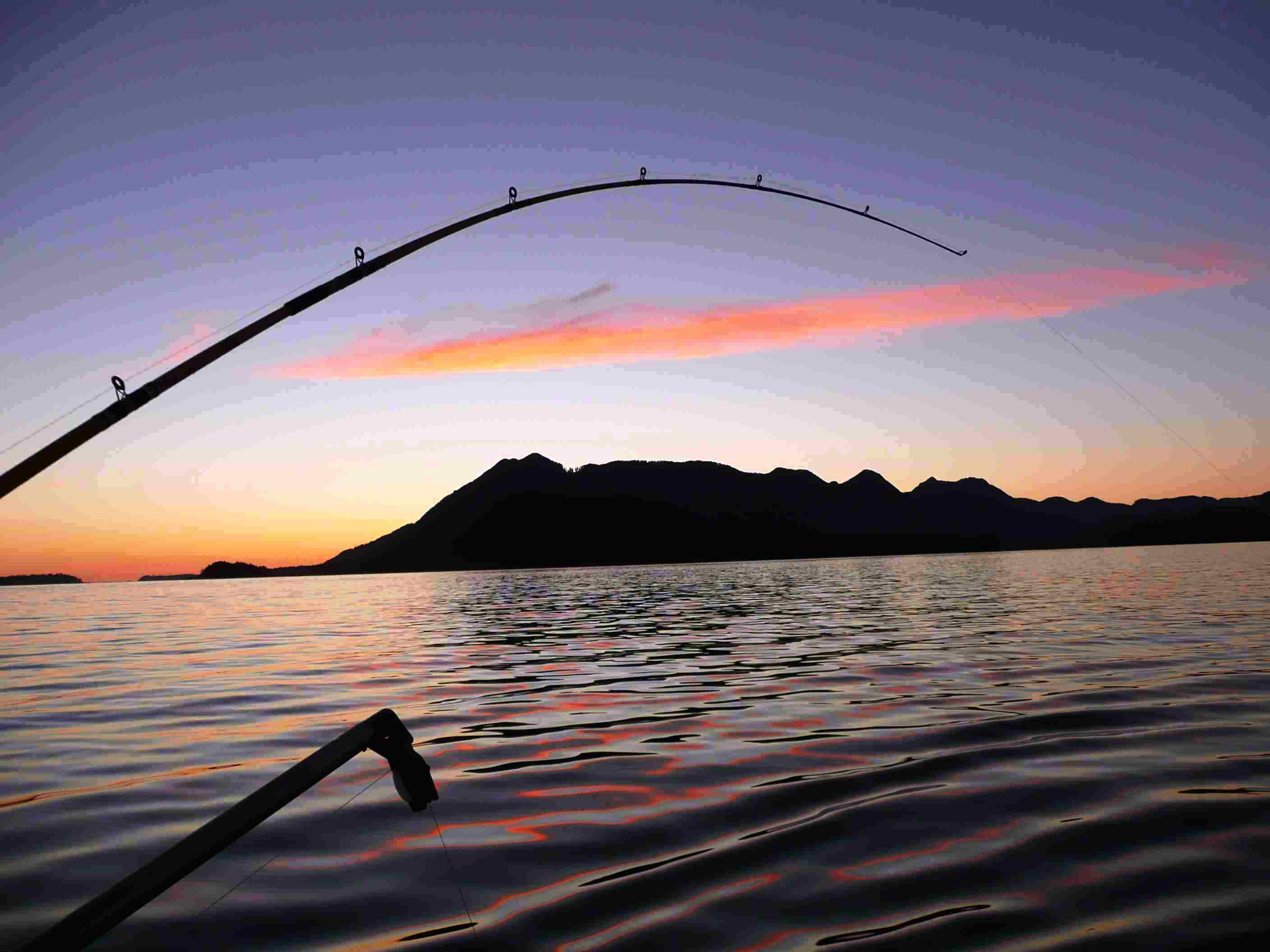 Fishing Rods In Sunset Wallpaper Picture 275 Wallpaper with 2816x2112 2816x2112