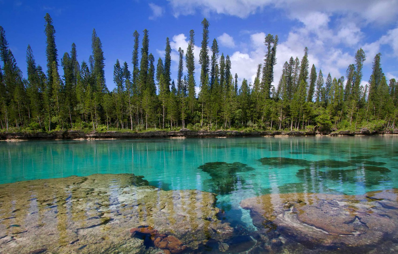 Wallpaper The Pacific ocean New Caledonia Isle of pines images 1332x850