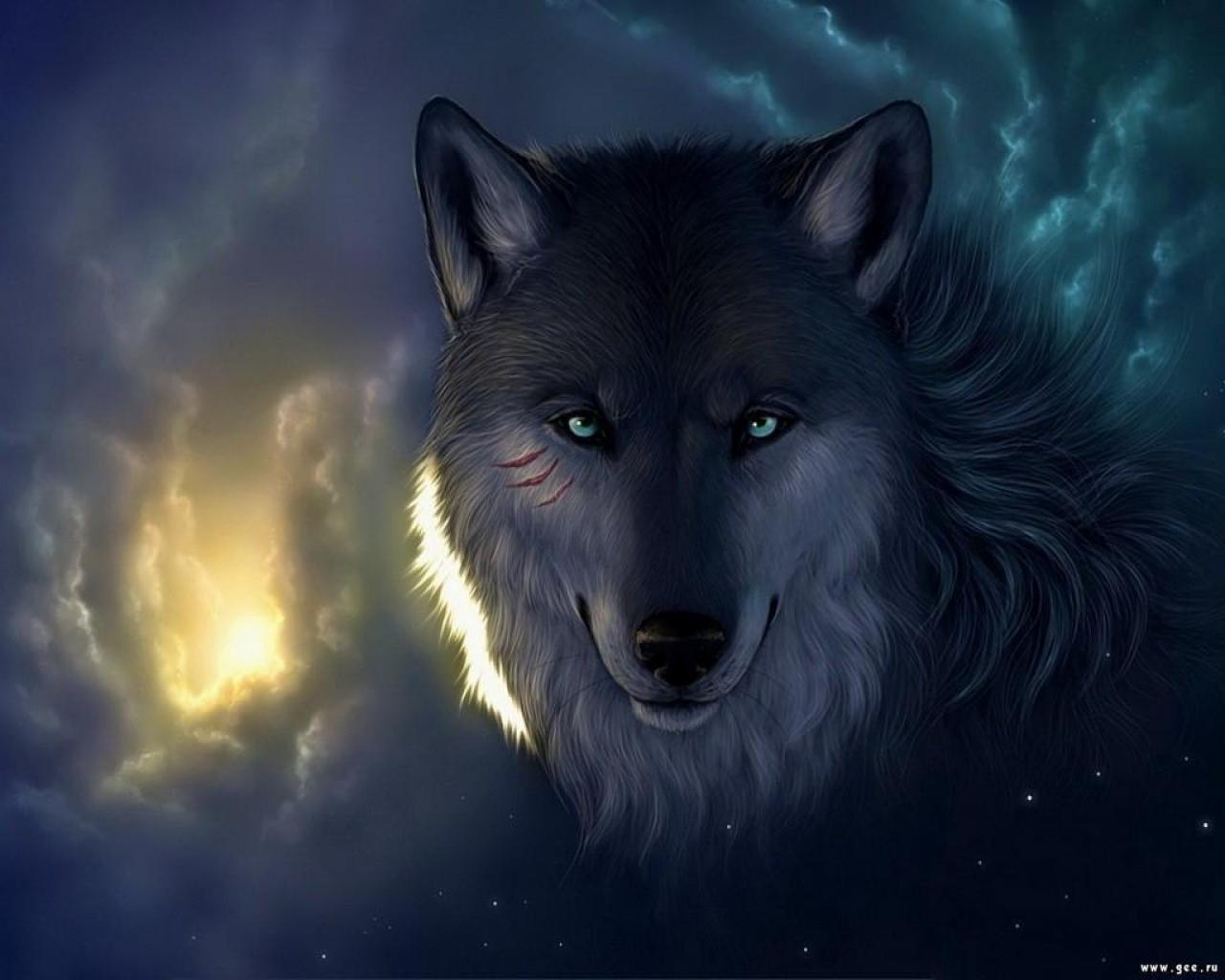 in the Wild Wallpapers Wolf in the Wild Backgrounds Wolf in the Wild 1280x1024