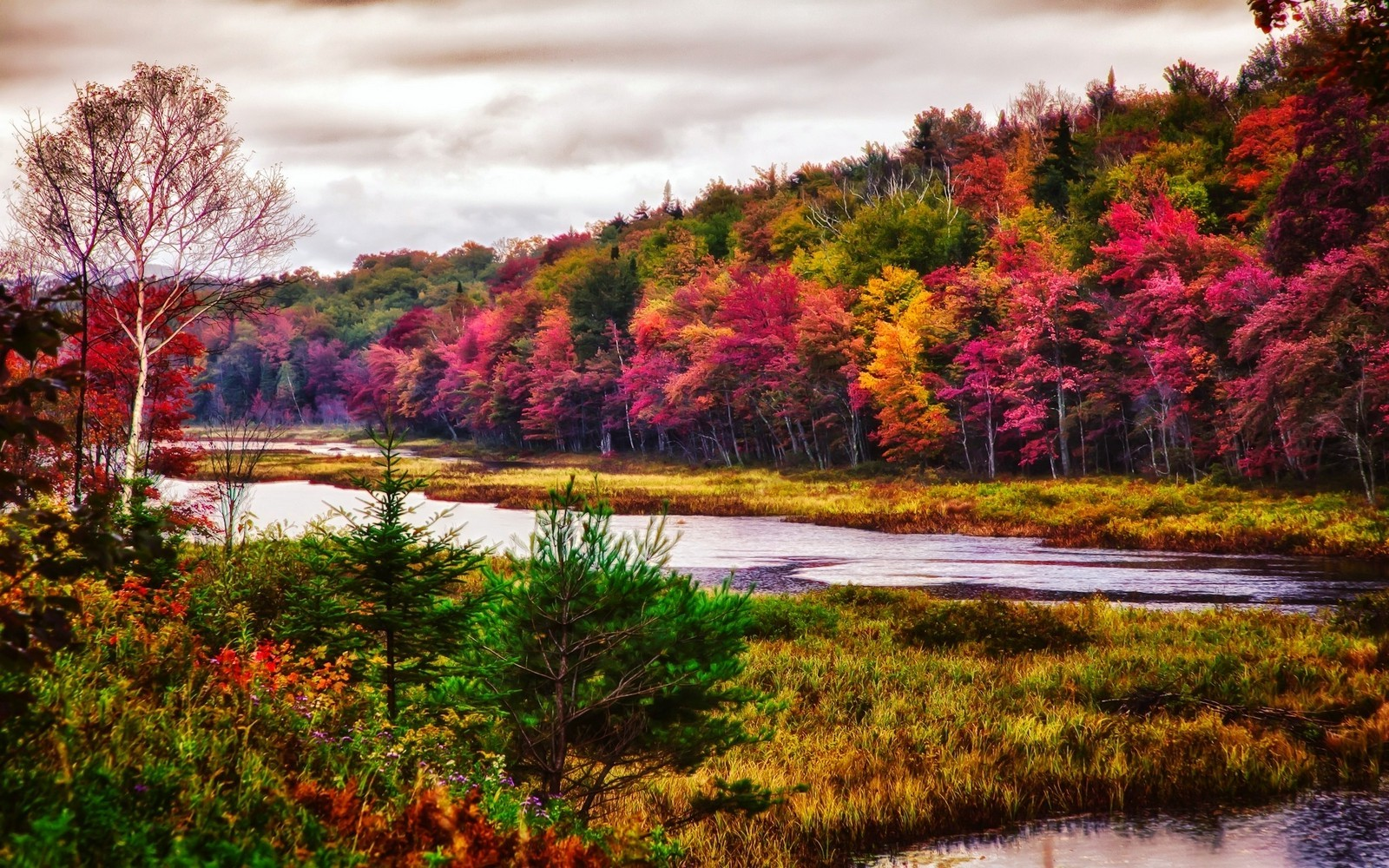 nature Landscape Trees River Fall Forest Colorful 1600x1000