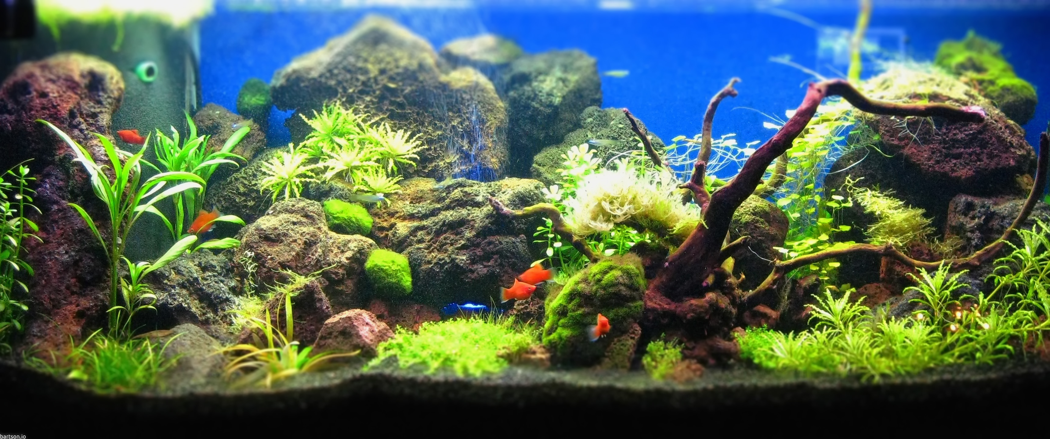 Hd wallpaper ultra wide - Aquascape 21 9 Wallpaper F R Ultrawide Monitore