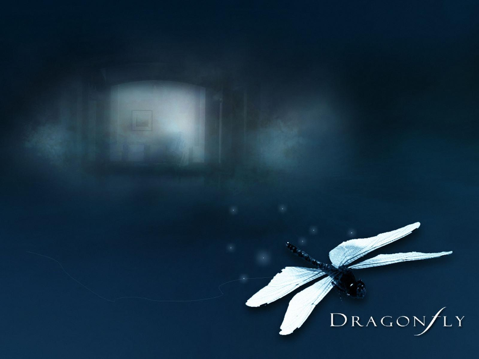 Dragonfly WallpapersDragonfly Wallpapers Pictures Download 1600x1200