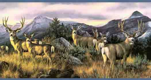 Blue Mule Deer Wallpaper Border 525x278