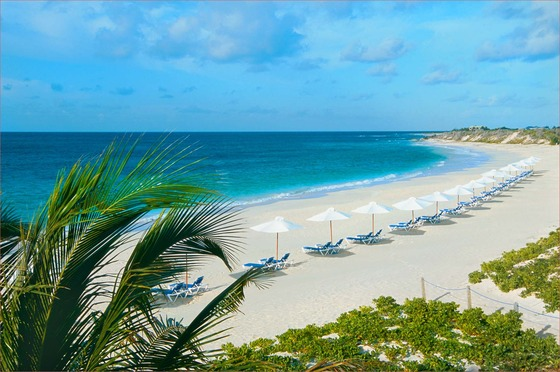 best online source Florida beach beaches wallpaper florida beaches 560x372