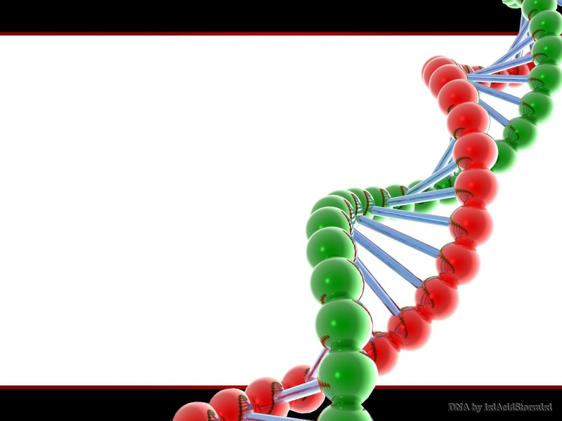 Wallpaper 3d dna hd 3d dna wallpaper 3d Dna Wallpaper High Resolution 800x600