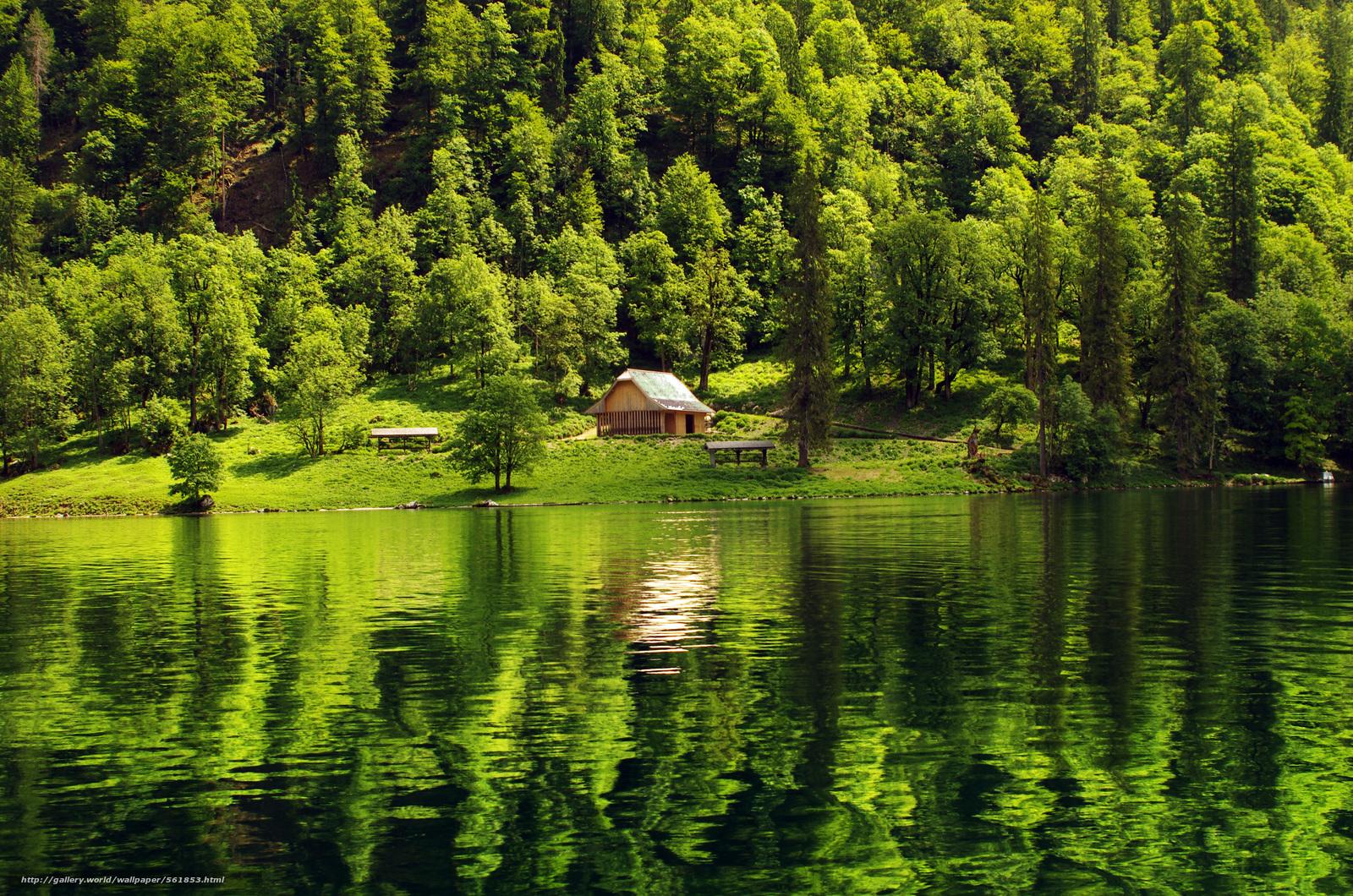 wallpaper forest lake cabin landscape desktop wallpaper 1600x1060