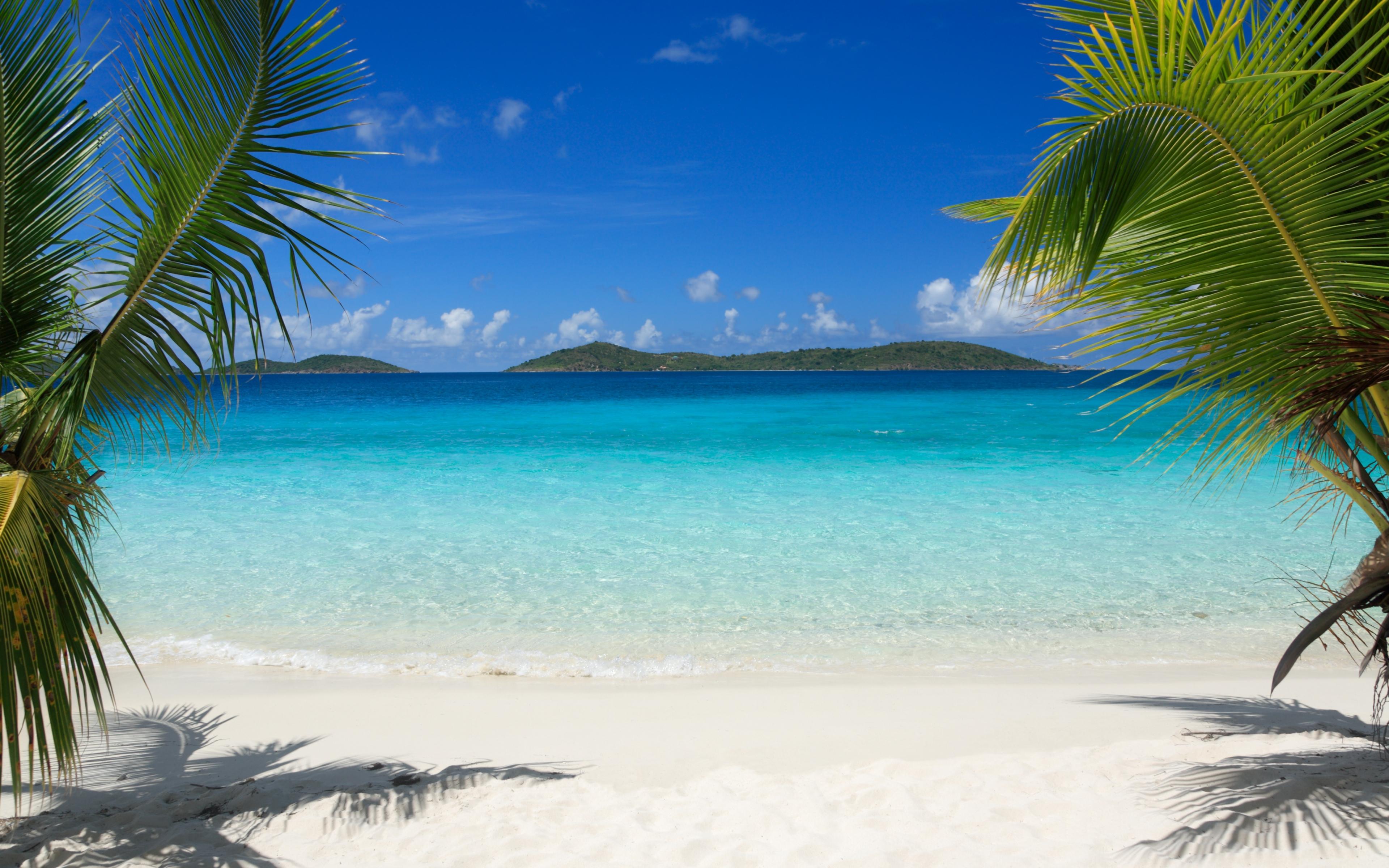 Tropical Island Beach Palm Trees Sea Waves Wallpaper WallpapersByte 3840x2400