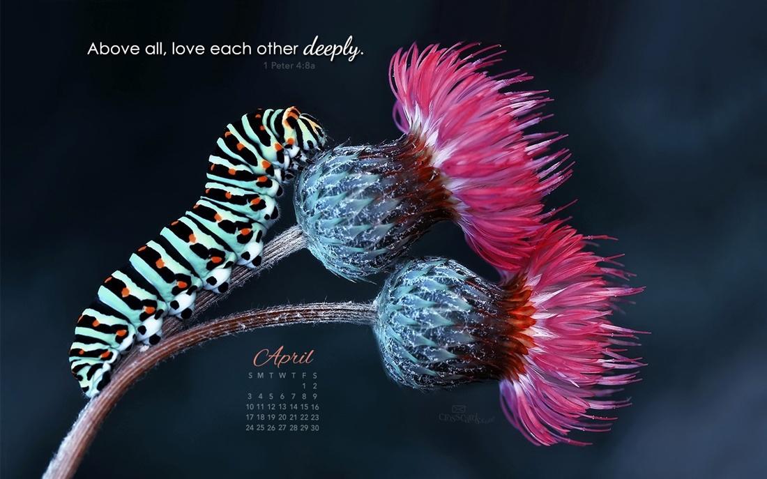 April 2016   Love Deeply Desktop Calendar  April Wallpaper 1100x687