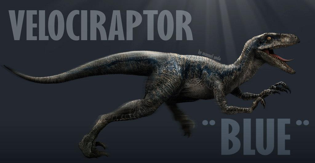 jurassic world velociraptor wallpaper wallpapersafari
