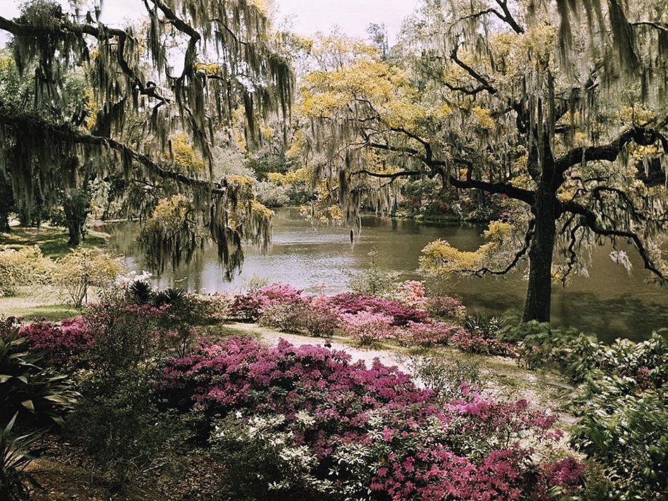 Charleston South Carolina 950x712