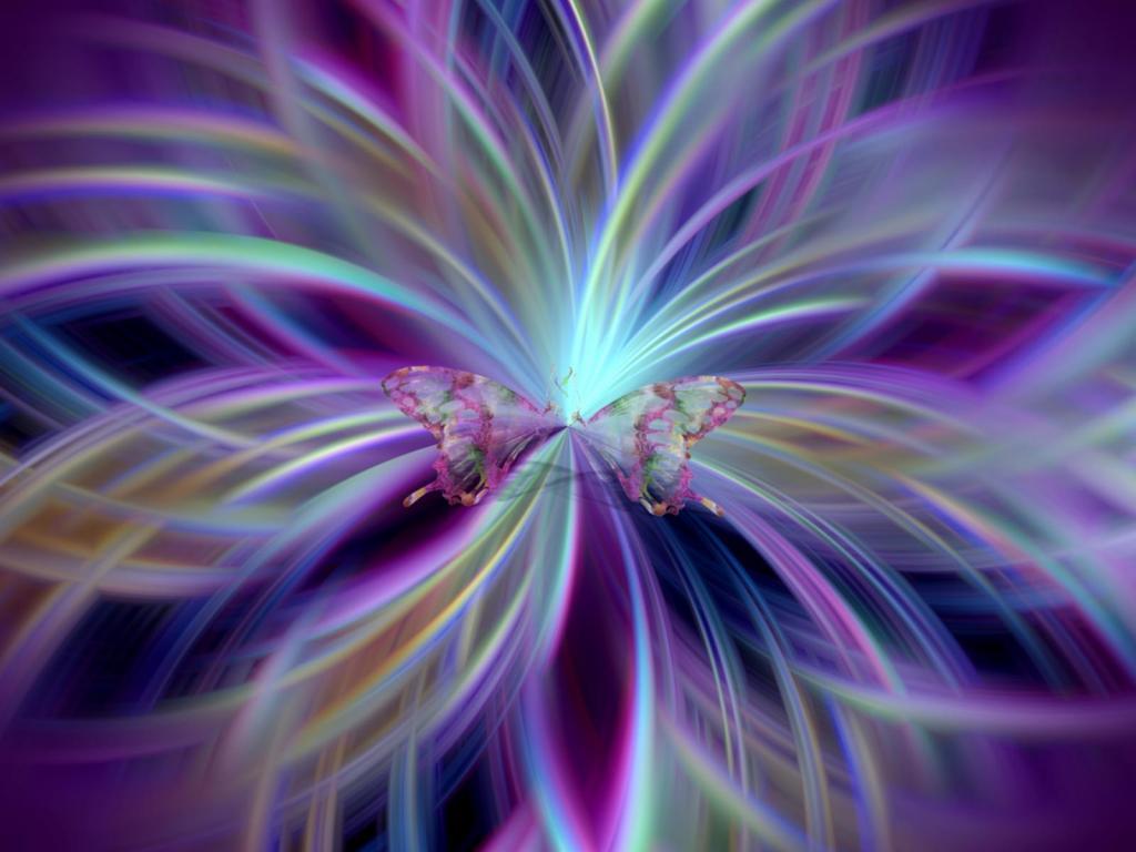 Purple butterfly wallpaper - photo#33