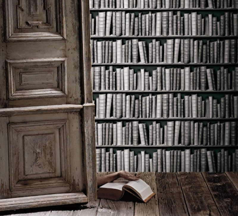 Vintage Black And White Library Bookshelf Wallpaper 800x725