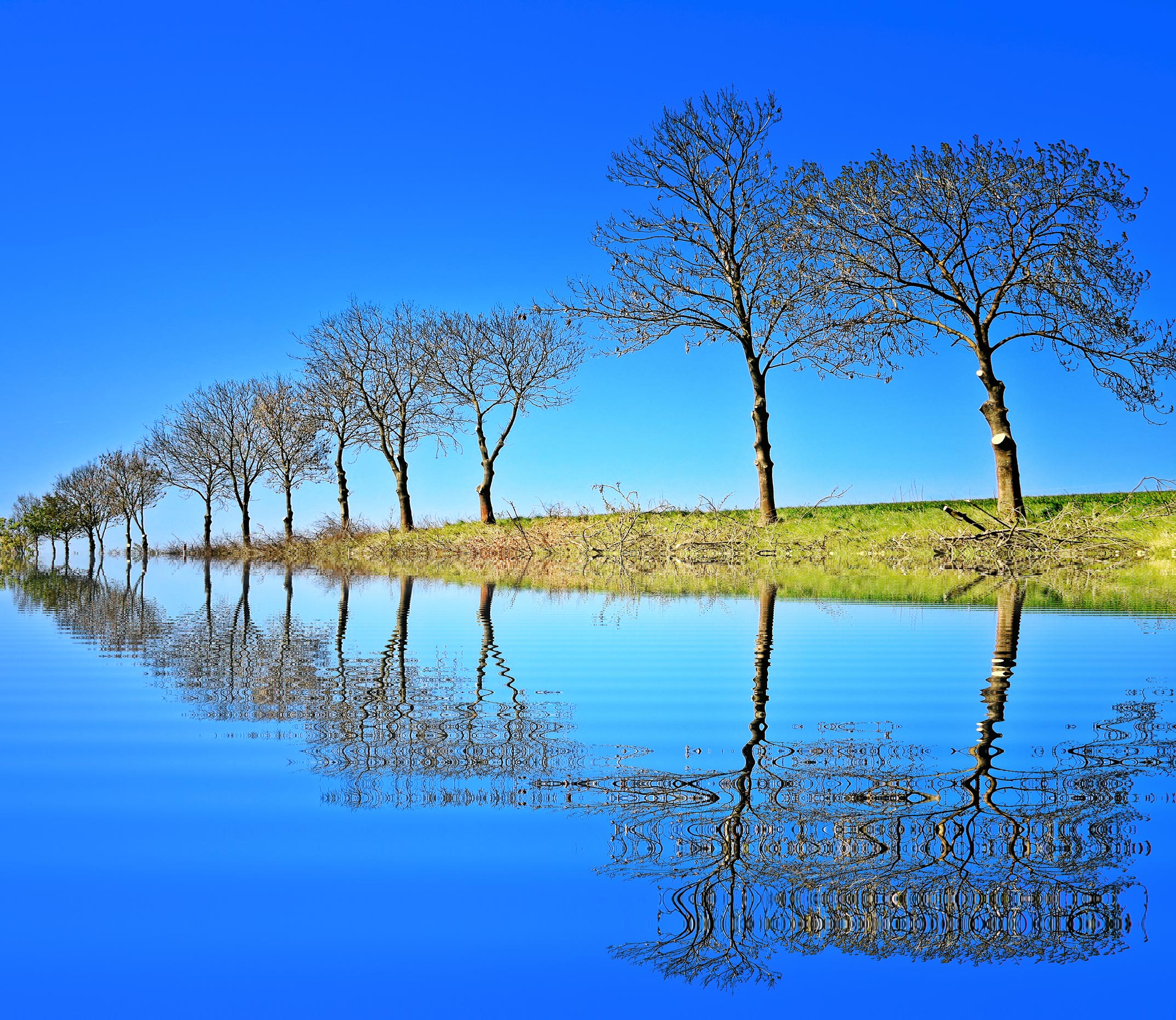 amazing beautiful free nature wallpapers hd free hd nature desktop