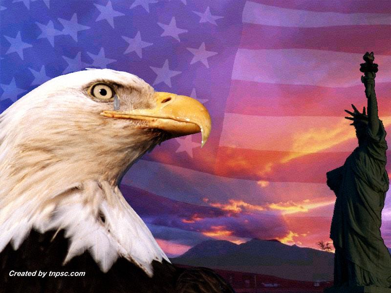 Eagle American Flag Clip Art 800x600