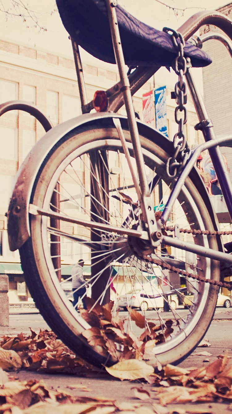 Vintage Hipster Bike Chained iPhone 6 Wallpaper iPod Wallpaper HD 750x1334