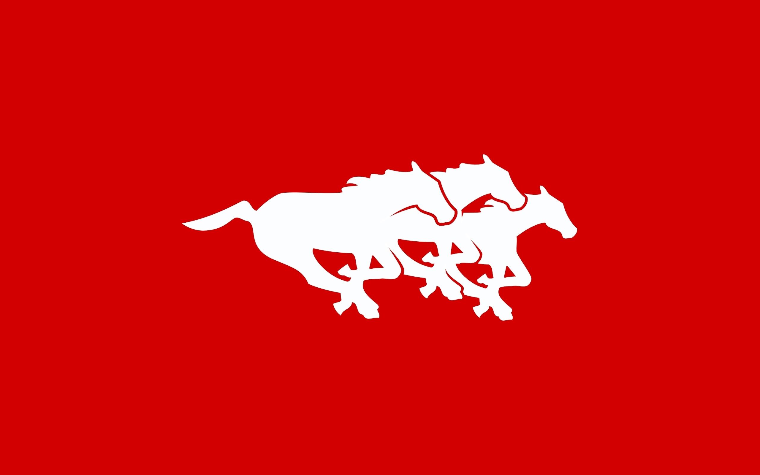 Calgary Stampeders 2560x1600