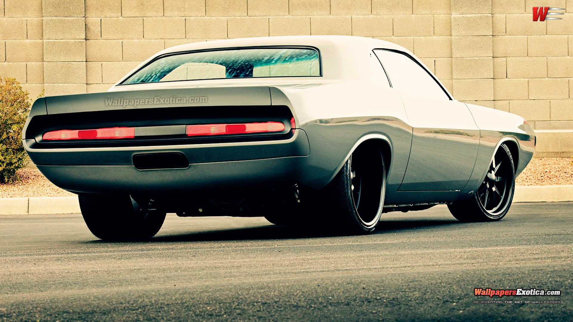 Pin Dodge Challenger Muscle Car Wallpaper 1920x1080