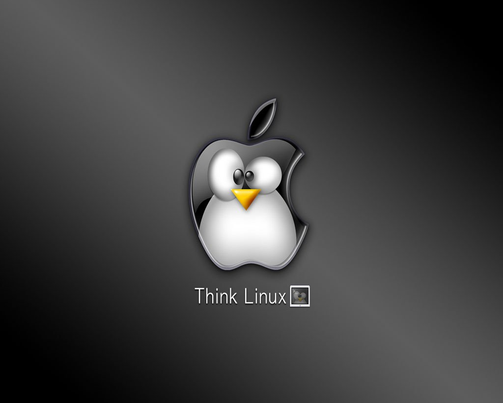 Top Linux Mint Wallpaper 1080p Images for Pinterest 1024x819