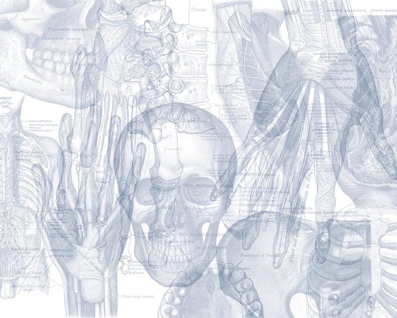 grey 39 s anatomy desktop wallpaper wallpapersafari