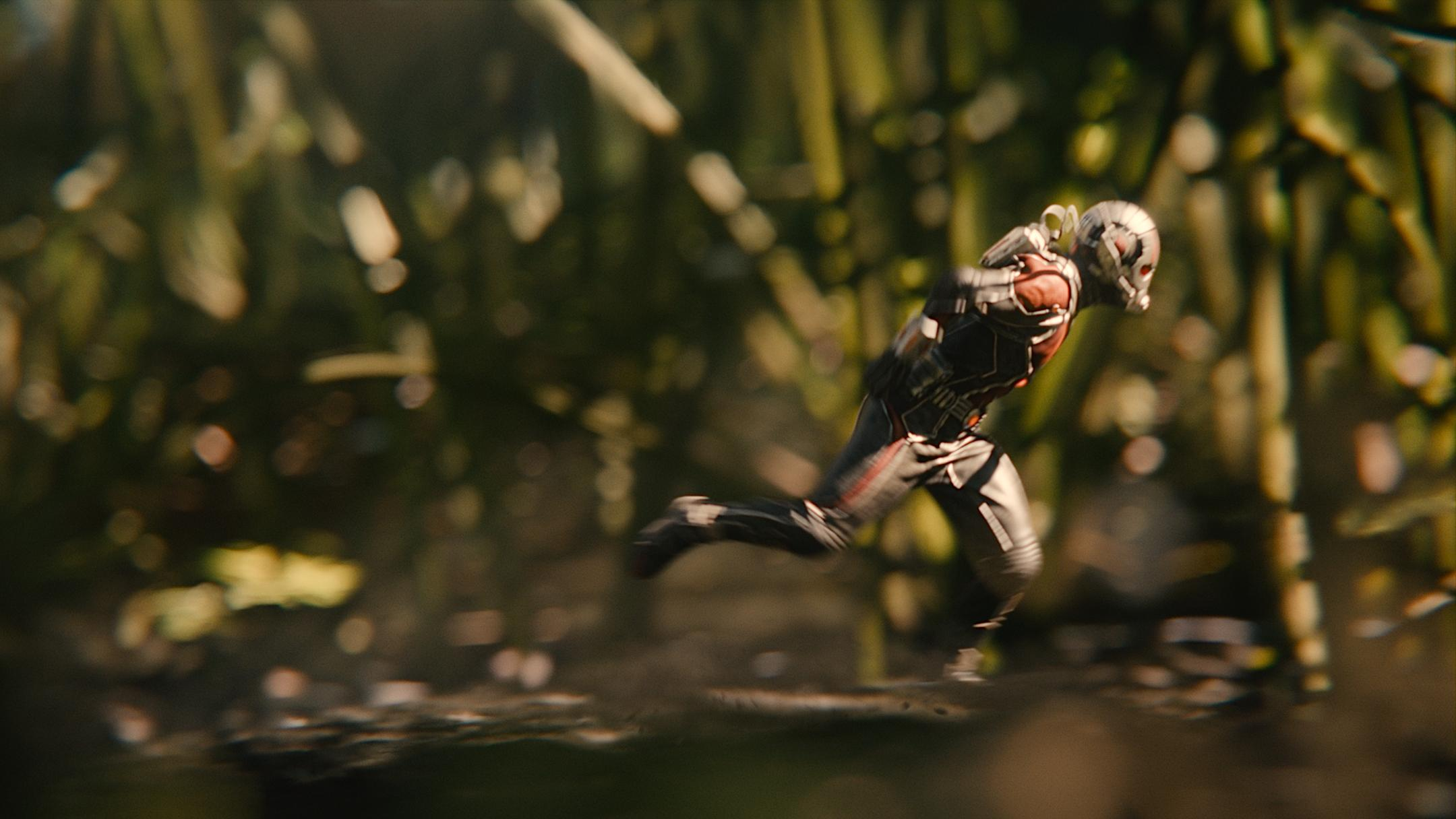 Latest Ant Man Desktop Wallpapers 2160x1216